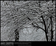 Title 'More Snow' | 