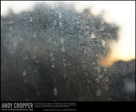 Title 'Train Window Stains' | 